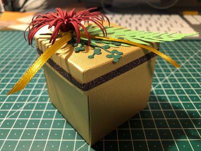 Rettungs-Box